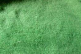 Stof - Licht groen